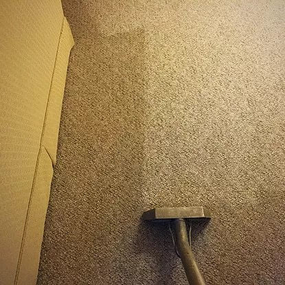 steam cleaner on a carpet carpet cleaning service